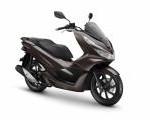 Mau Tau..? Warna & Harga Terbaru Skutik Honda PCX Yang Akan Dihadirkan AHM, Berikut Infonya...!!!