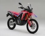Hadir Lebih Fresh Dan Tangguh Honda CRF 250 RALLY Dengan Adanya Sentuhan Baru Di Tahun 2021