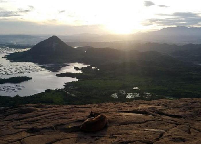 Mendaki Gunung Lembu, Suguhkan Panorama Menakjubkan Di Sekitar Waduk Jatiluhur